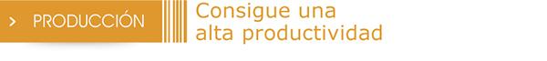 titulo_produccion